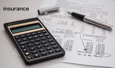 収入保障保険の特徴と評価、加入した理由について